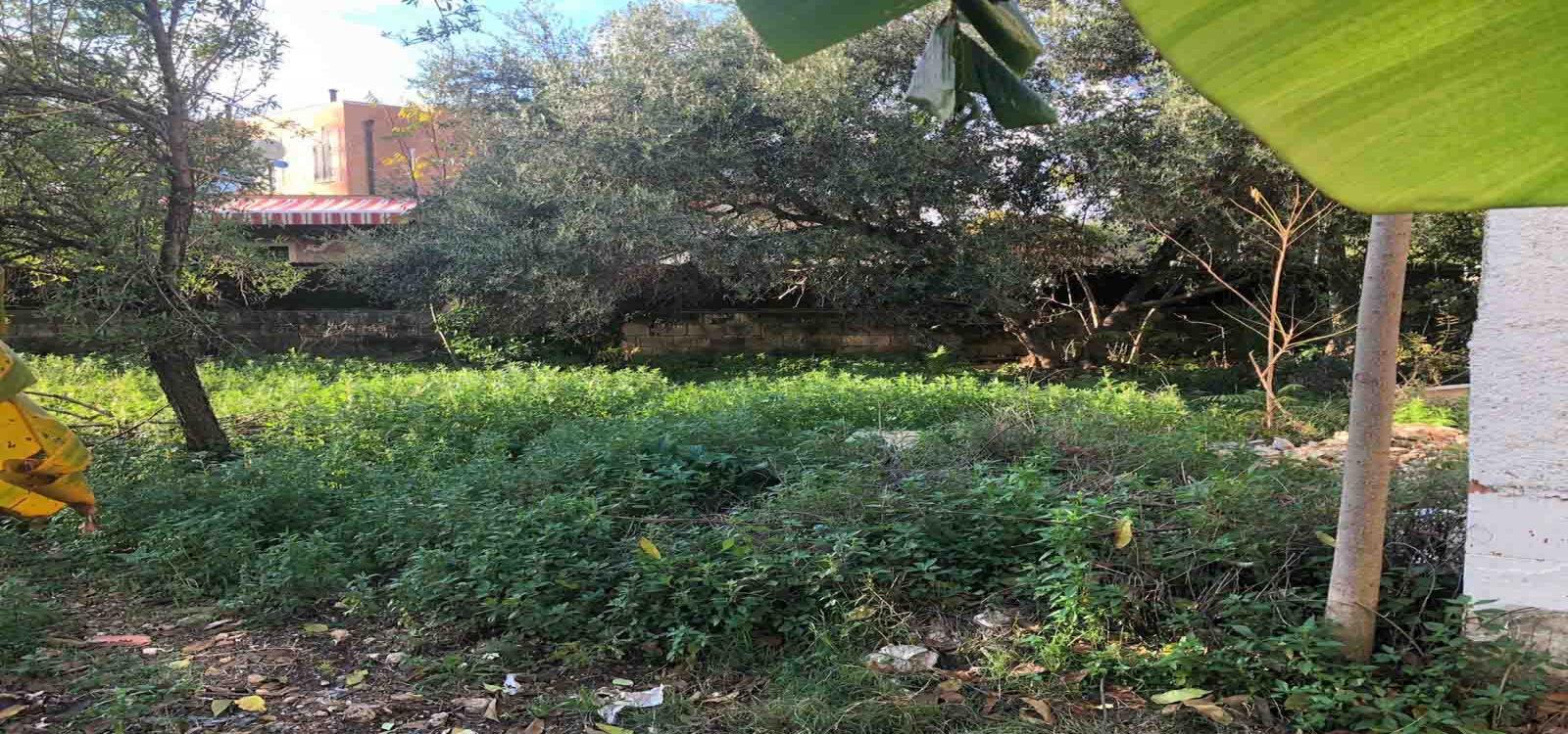 isola,SIRACUSA,96100,Villa,isola,2304